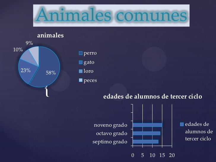 Animales comunes<br />