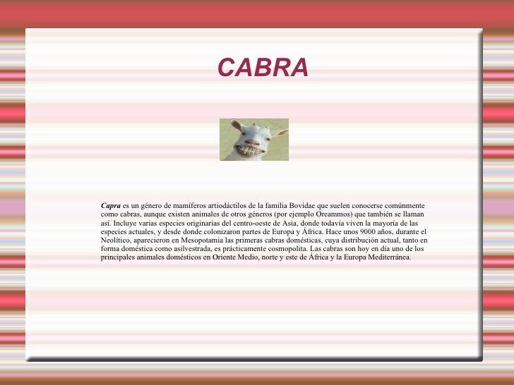 Animales De Granja Fco Jimenez Galiano Y Fco  Jimenez Ponce Slide 3