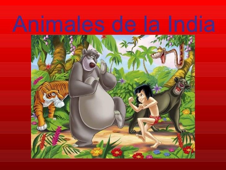 Animales de la India