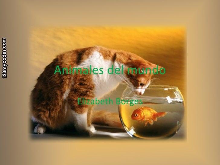 Animales del mundo Elizabeth Borges