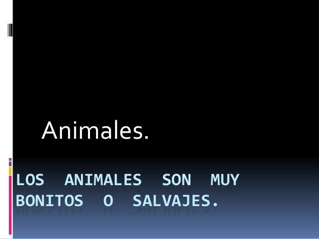 LOS ANIMALES SON MUY BONITOS O SALVAJES. Animales.