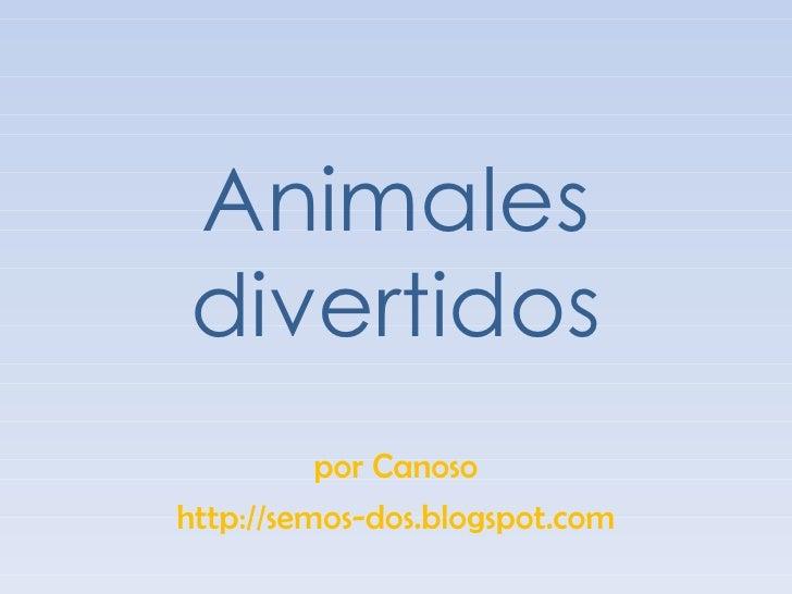 Animales divertidos por Canoso http://semos-dos.blogspot.com