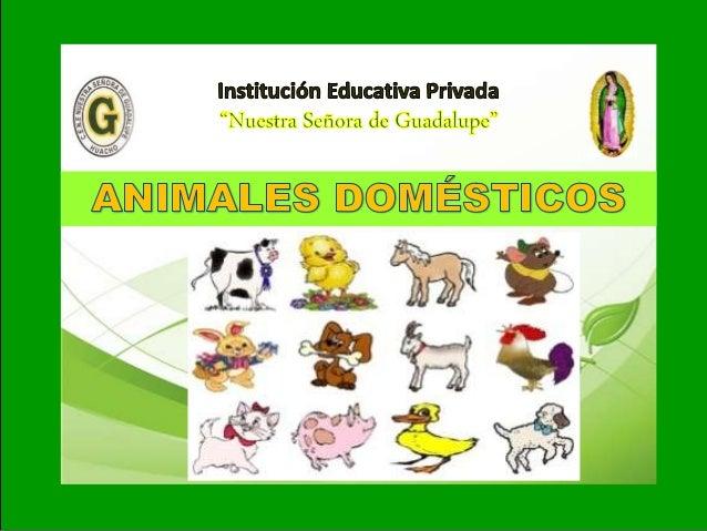 I I- Unidad: Tema: ANIMALES DOMÉSTICOS