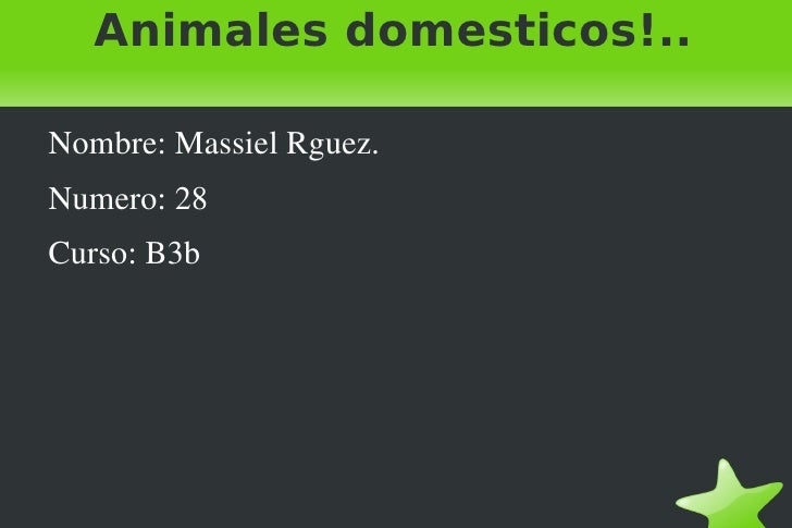Animales domesticos!.. <ul><li>Nombre: Massiel Rguez.