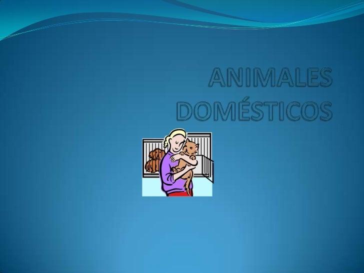  El cuidado del animal  doméstico es un aspecto  crítico de adoptar un  animal doméstico. Si está  alimentando, el conten...