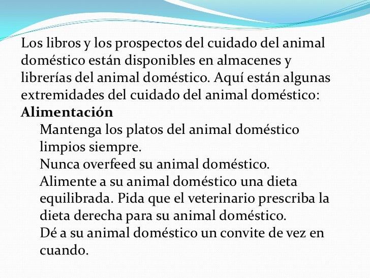 Animales domésticos Slide 3