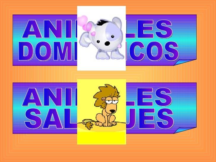 ANIMALES DOMÉSTICOS ANIMALES SALVAJES SALVAJES DOMÉSTICOS