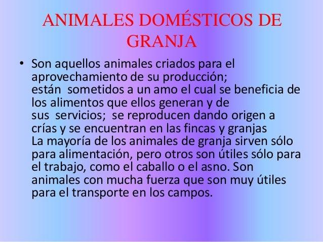 Animales domésticos y salvajes