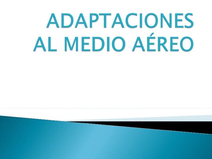    Adaptación   Medio Aéreo   Insectos   Aves   Lagartos   Murciélagos   Réptiles