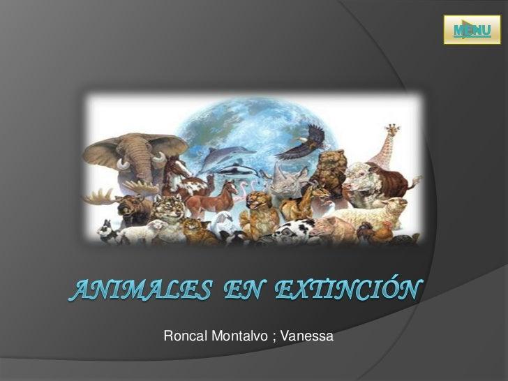 Roncal Montalvo ; Vanessa
