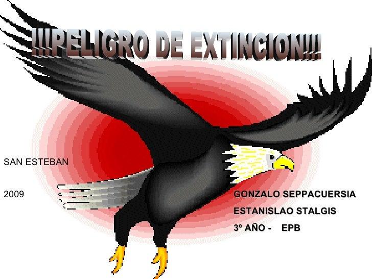 !!!PELIGRO DE EXTINCION!!! GONZALO SEPPACUERSIA  ESTANISLAO STALGIS  3º AÑO -  EPB SAN ESTEBAN 2009