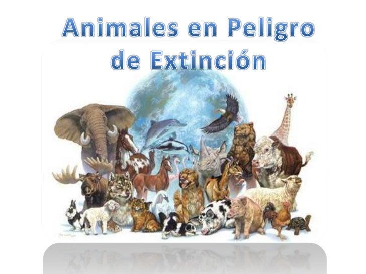 Animales en Peligro <br />de Extinción <br />