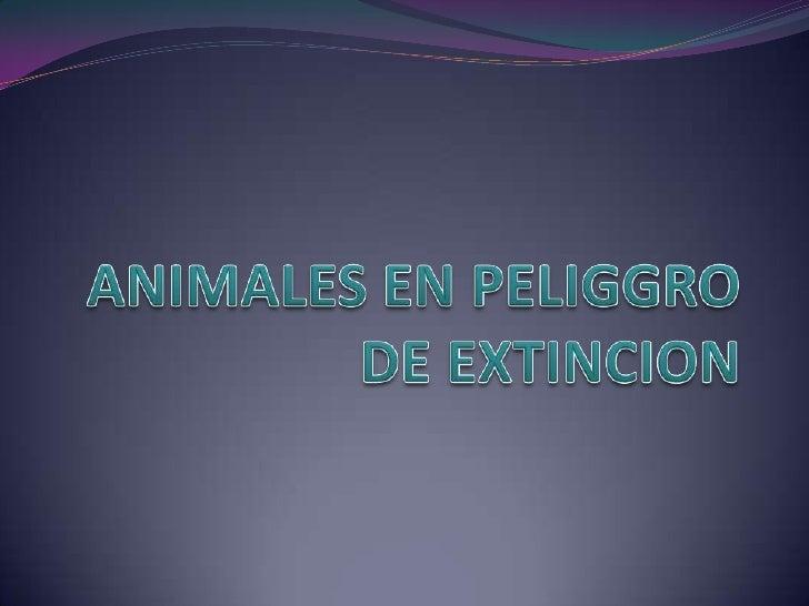  Una especie en peligro de extinción es una especie que puede extinguirse en el futuro. En el mundo se pierden cientos de...