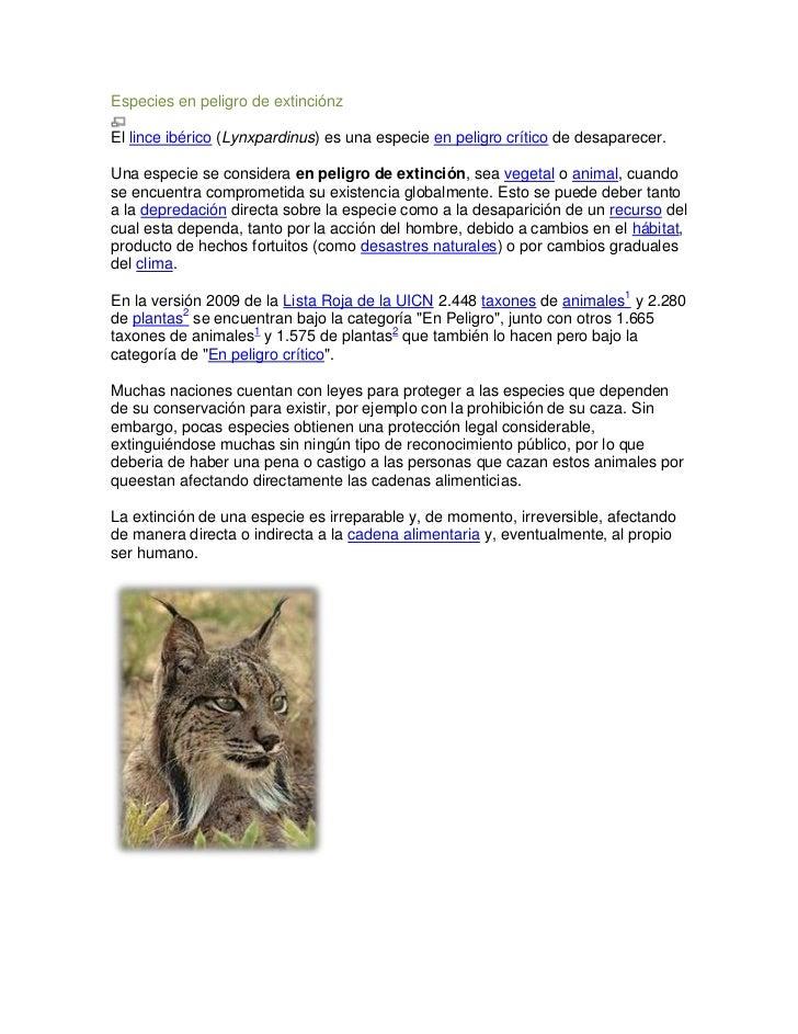 Especies en peligro de extinciónzEl lince ibérico (Lynxpardinus) es una especie en peligro crítico de desaparecer.Una espe...