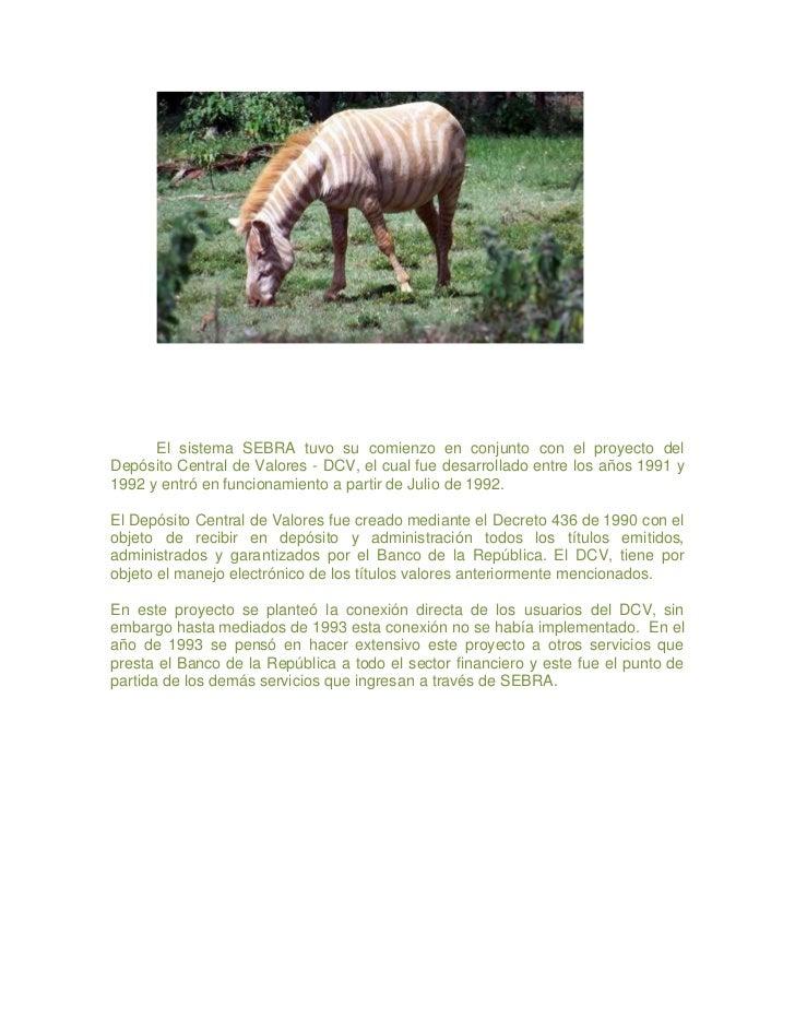 Animales en peligro de extinción Slide 2