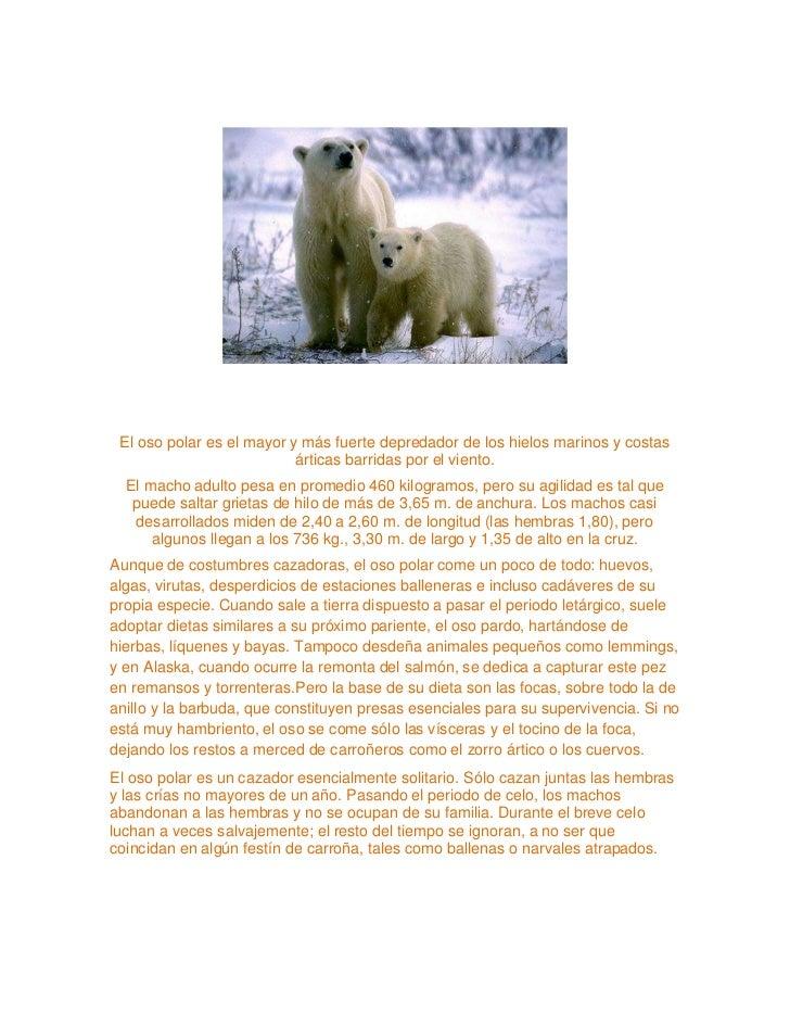 Animales en peligro de extinción Slide 3