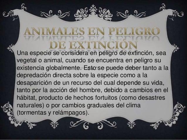 Una especie se considera en peligro de extinción, seavegetal o animal, cuando se encuentra en peligro suexistencia globalm...