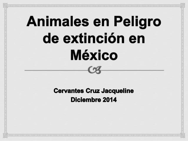 ¿Qué es peligro de extinción?  ¿A qué se debe?  Estado de conservación  La Lista Roja  Categorías de la Lista Roja  México...