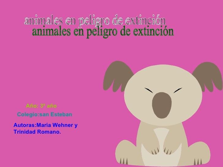 animales en peligro de extinción Autoras:María Wehner y Trinidad Romano. Colegio:san Esteban Año: 3º año