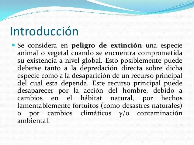 ALGUNAS  ESPECIES EN PELIGRO DE EXTINCION