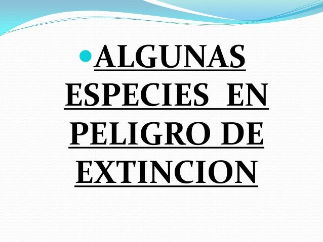 El Halcón Peregrino se encuentra en peligro de extinción, es  un ave que habita en Sur América, Norte América, Canadá, M...