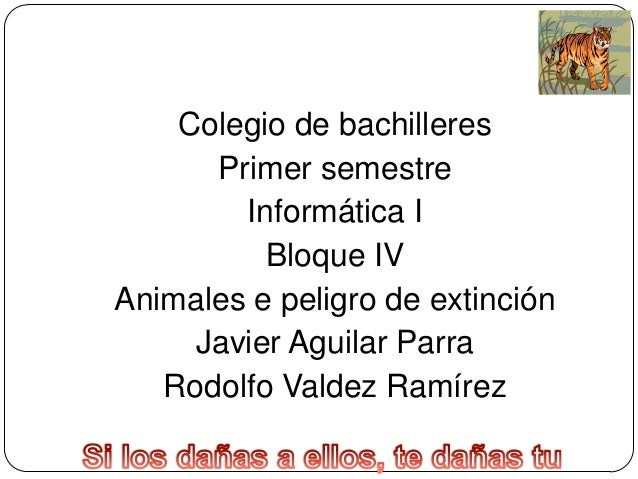 Colegio de bachilleres Primer semestre Informática I Bloque IV Animales e peligro de extinción Javier Aguilar Parra Rodolf...