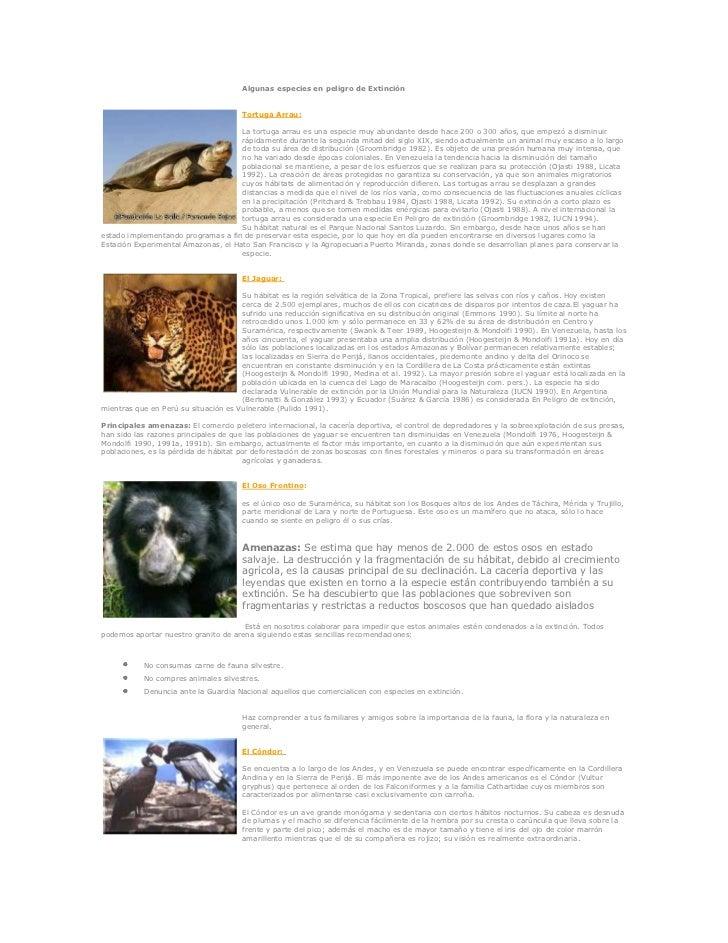 Algunas especies en peligro de Extinción<br />left0Tortuga Arrau:La tortuga arrau es una especie muy abundante desde hace ...