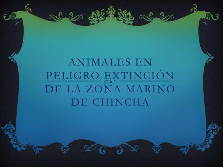 ANIMALES ENPELIGRO EXTINCIÓNDE LA ZONA MARINO    DE CHINCHA