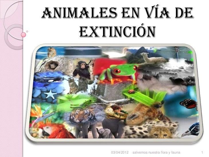 Animales en vía de    extinción        03/04/2012   salvemos nuestra flora y fauna   1