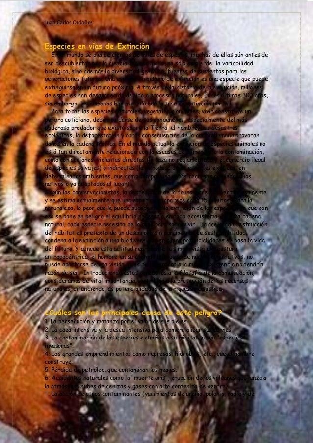 Juan Carlos OrdoñezEspecies en vías de Extinción   En el mundo se pierde cientos de miles de especies, muchas de ellas aún...