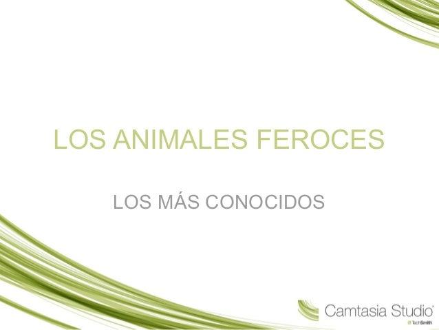 LOS ANIMALES FEROCES LOS MÁS CONOCIDOS