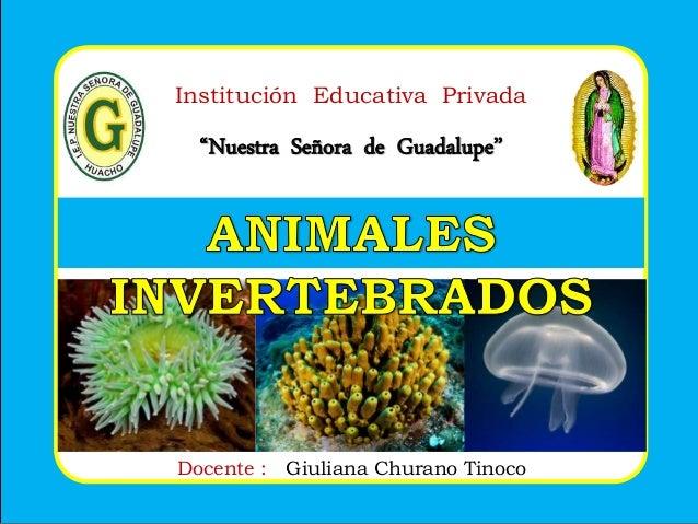 """Institución Educativa Privada """"Nuestra Señora de Guadalupe"""" Docente : Giuliana Churano Tinoco"""