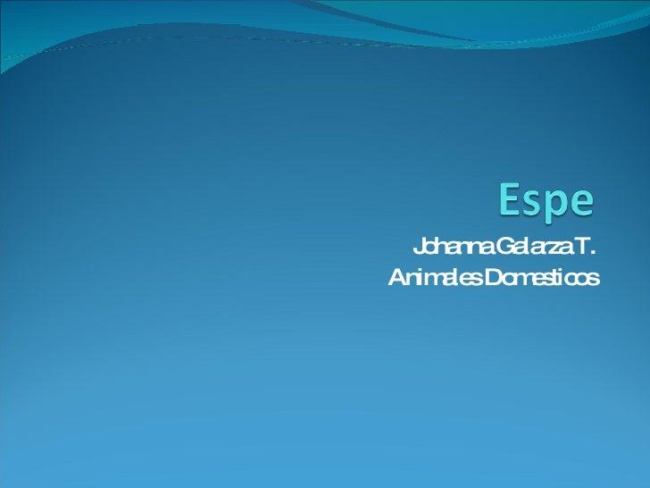 Johanna Galarza T. Animales Domesticos
