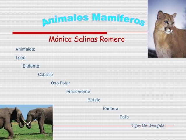 Mónica Salinas Romero Animales: León Elefante Caballo Oso Polar Rinoceronte Búfalo Pantera Gato Tigre De Bengala