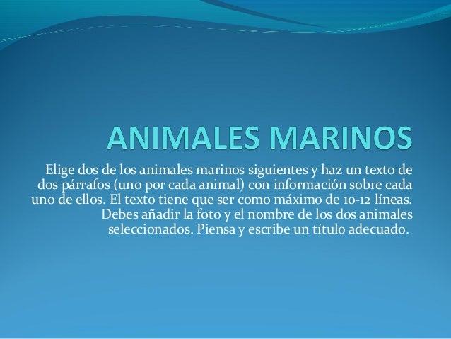 Elige dos de los animales marinos siguientes y haz un texto de dos párrafos (uno por cada animal) con información sobre ca...