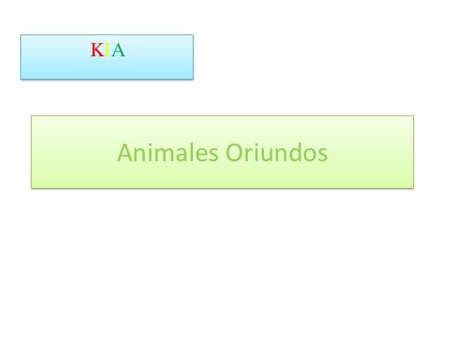 Animales Oriundos KIA