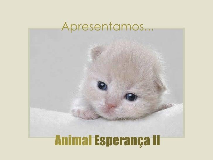 Apresentamos... Animal  Esperança II