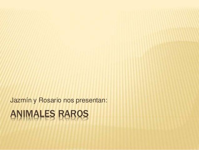ANIMALES RAROS Jazmín y Rosario nos presentan: