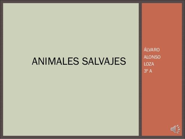 ÁLVARO                    ALONSOANIMALES SALVAJES   LOZA                    3º A