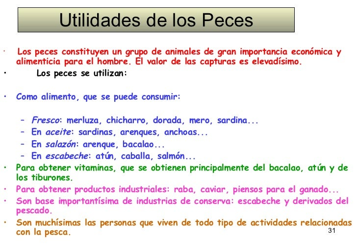 Utilidades de los Peces <ul><li>Los peces constituyen un grupo de animales de gran importancia económica y alimenticia par...