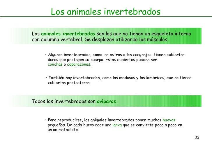 Los animales invertebrados Los  animales invertebrados  son los que no tienen un esqueleto interno con columna vertebral. ...