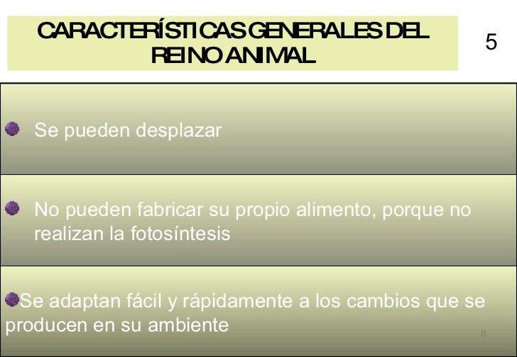 CARACTERÍSTICAS GENERALES DEL REINO ANIMAL 5 <ul><li>Se adaptan fácil y rápidamente a los cambios que se producen en su am...