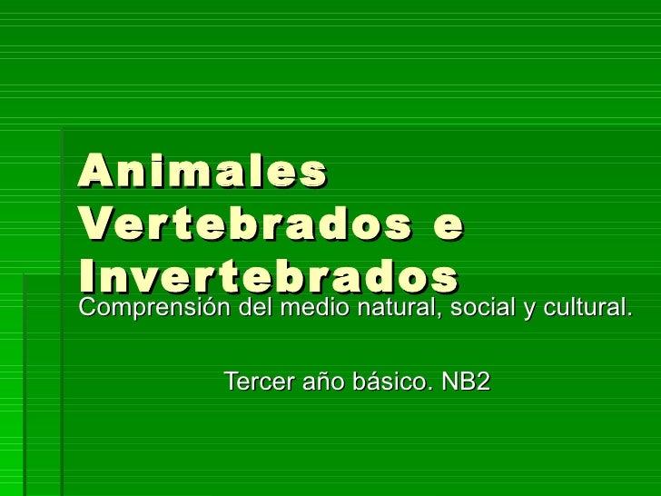 AnimalesVer tebr ados eInver tebr adosComprensión del medio natural, social y cultural.            Tercer año básico. NB2