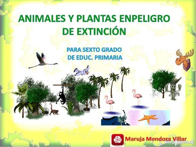  Extinción.  Especies en Peligro de Extinción.  Causas del Peligro de Extinción de las Especies.  Especies en Peligro ...