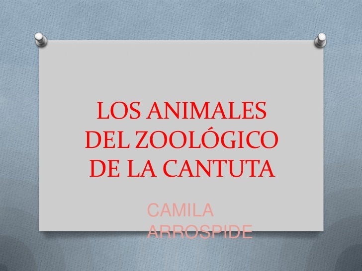 LOS ANIMALESDEL ZOOLÓGICODE LA CANTUTA    CAMILA    ARROSPIDE