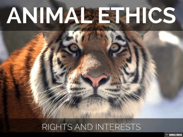 ethical egoism animal rights Rachels psychological and ethical egoism posted on september 15, 2014 by kia thomas | 2 comments  emily wang on moral.
