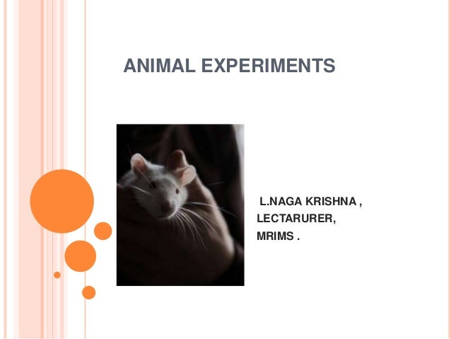 informative writing on animal experimentation Expository writing, sometimes called informative writing, seeks to relay information to the reader it is one of the main modes of writing and includes such formats as reports, instructions, term papers and even business letters.