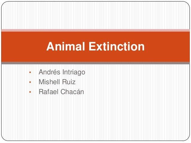 Animal Extinction•   Andrés Intriago•   Mishell Ruiz•   Rafael Chacán