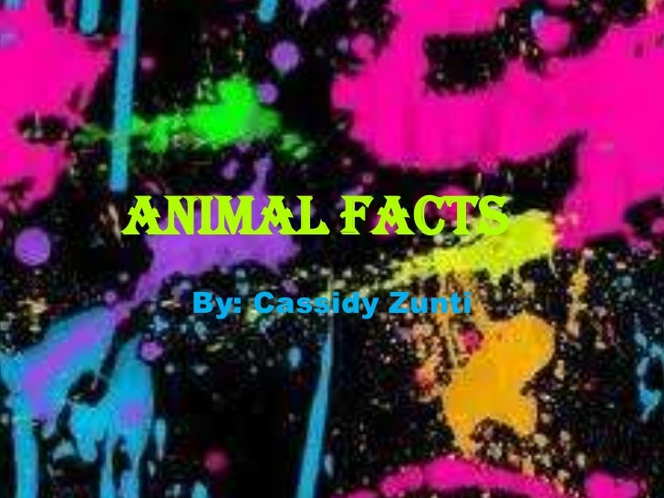 Animal Facts  By: Cassidy Zunti