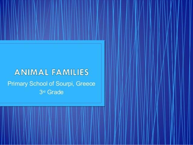 Primary School of Sourpi, Greece 3rd Grade